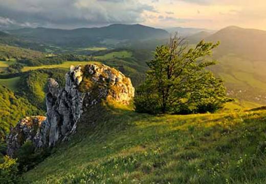 Far Hills